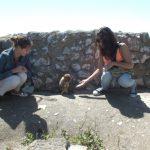 Dwie studentki bawiące się z małpami podczas wycieczki do Gibraltaru