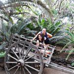 Dwie studentki pozują przy drewnianym wózku dwukołowym w tle palmy