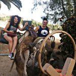 Dwie studentki podczas zwiedzania Oazis Park na grzbiecie wielbłąda