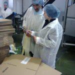 Pracownicy w strojach ochronnych w pakowalni