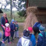 Dzieci oraz ich opiekunka obserwują jak słomę układa się w kucki