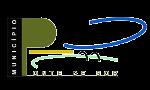 Logo PSM