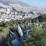 Erasmus Ateny 2019-12