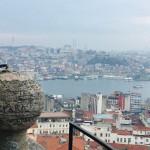 Erasmus Turcja-styczen-2020-9