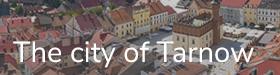 The city of Tarnow - baner