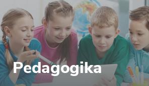 Pedagogika - baner mały