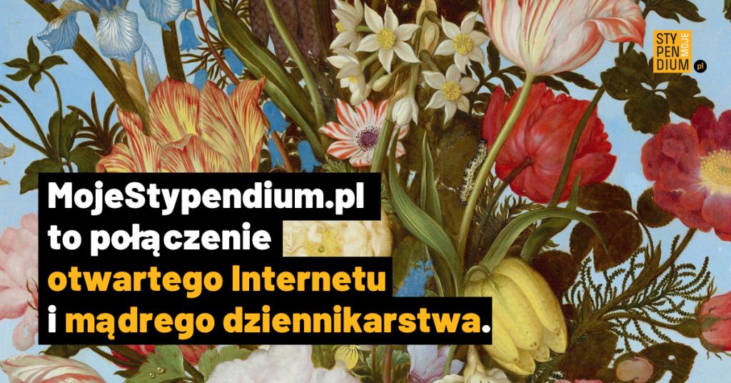Moej stypendium.pl